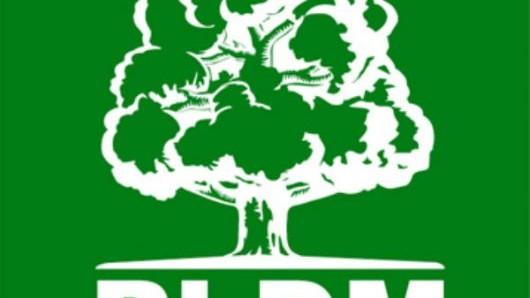 PLDM vrea să afle cine sunt proprietarii instituțiilor media