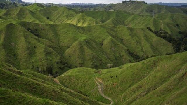 Eliminarea subvențiilor a dus la dezvoltarea Noii Zeelande
