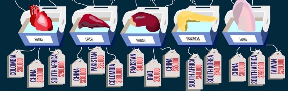 Lista de prețuri a organelor umane