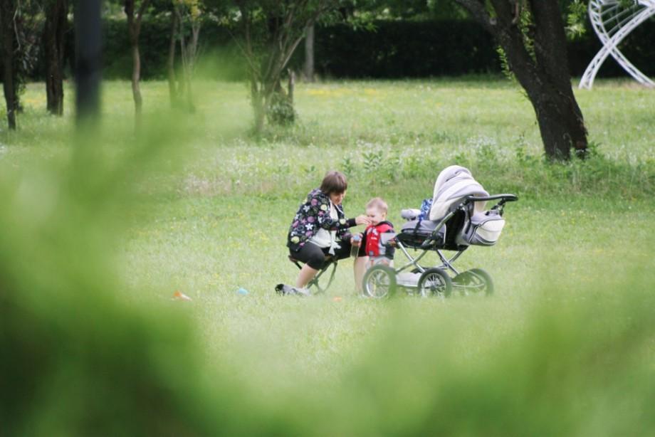 (foto) Ce fac oamenii în Grădina Botanică?