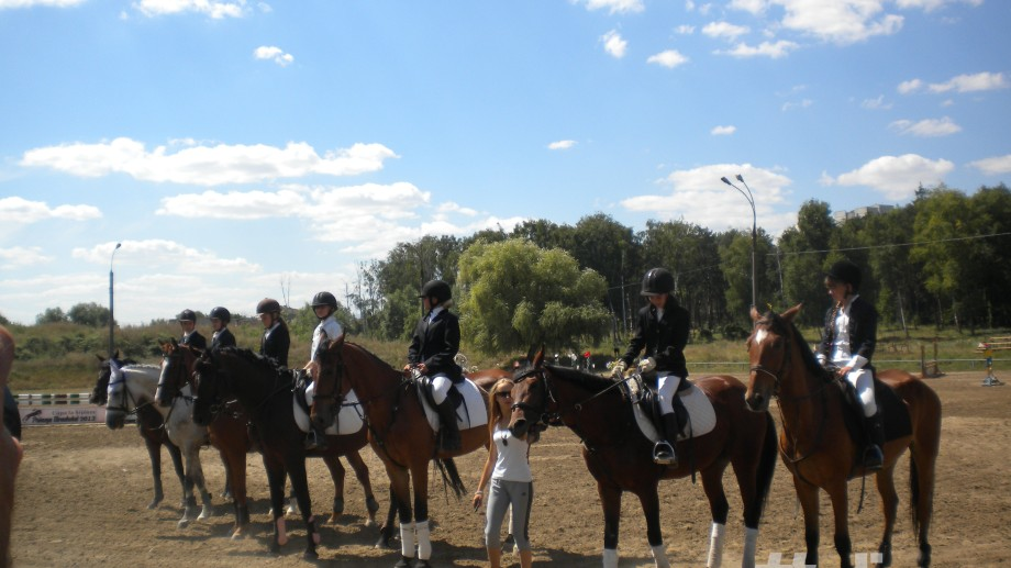 (foto) Frumusețea cailor de la Cupa la hipism