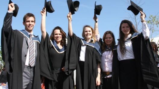Bursa IMAS pentru studenții de la sociologie