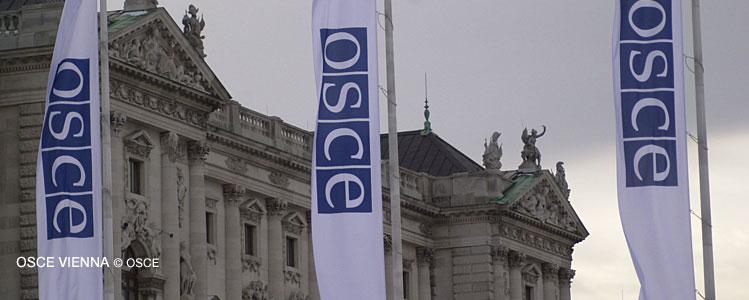 Ai oportunitatea să fii unul din tinerii ambasadori OSCE