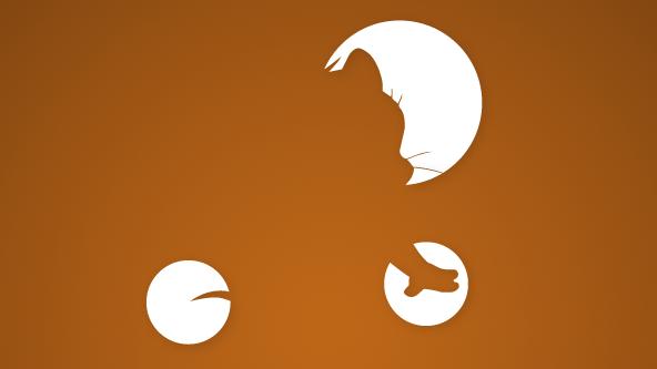 Think Invisible – proiectul care-ți testează memoria vizuală