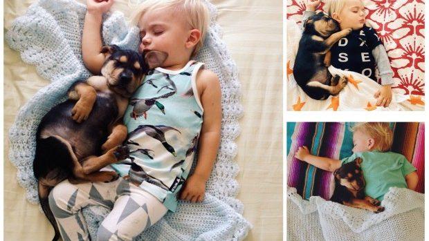 (foto) Poze emoționante cum dorm un băiețel de doi ani și cățelușul său