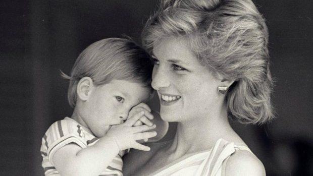 Teza privind asasinarea prințesei Diana, respinsă de poliția britanică
