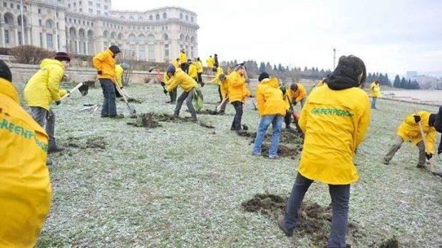Activiștii Greenpeace au căutat aur în curtea Parlamentului României