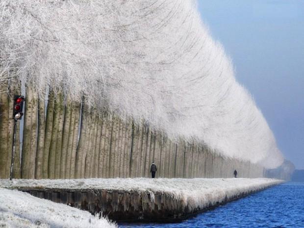 Peisaj de iarnă în Grabovica, Serbia. PC: Adme.ru