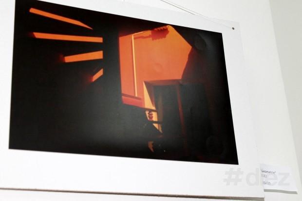 Arta fotografică la expoziția cu genericul ''Fuziunea Impresiilor''