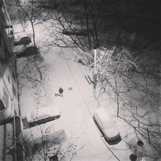 PC: Instagram/@annarodina