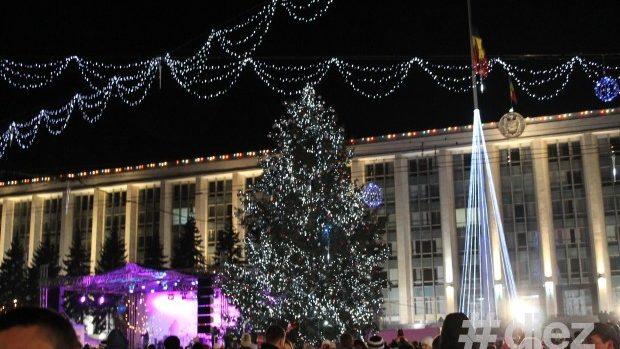 (foto) Căutăm cei mai frumoși brazi de Crăciun din Republica Moldova