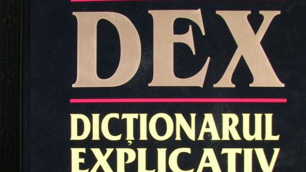 Cuvintele anului 2013 potrivit dexonline