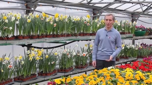 (video) Iurie Leancă, înconjurat de flori, le dorește cetățenilor o primăvară frumoasă