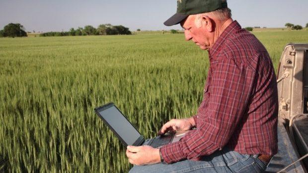 (grafic) Cei mai bine plătiți sunt angajații din sfera IT, iar cei mai prost – agricultorii