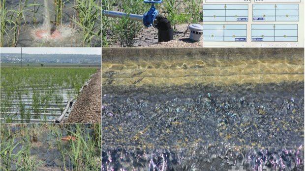 (foto) În Orhei a fost construită cea mai mare stație de epurare ecologică din Europa