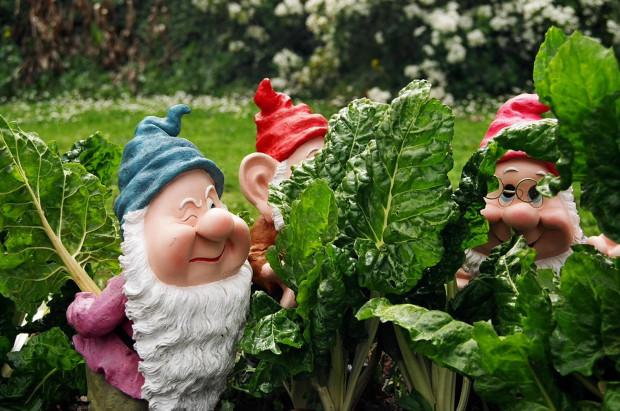 32425-dwarfs-in-the-garden
