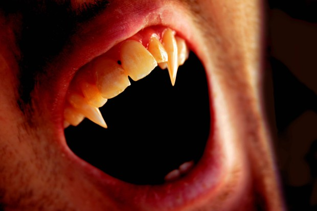 38270-vampires-vampire-fangs-up-close