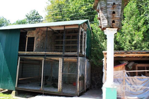 În cadrul mănăstirii este un mic zooparc, cu păsări și iepuri.