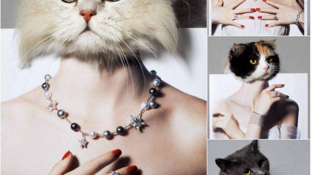 (foto) Noul pictorial de nuntă Vogue Japonia 2014 prezintă pisici și diamante