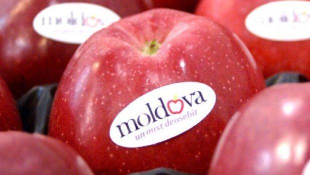 Rusia: Moldova foloseşte documente false pentru a încălca embargoul asupra fructelor