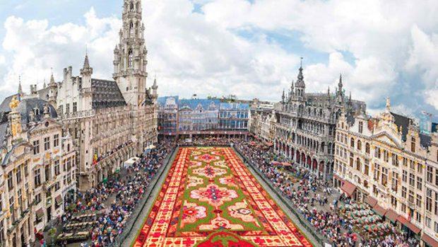 (foto, video) Cum arată covorul uriaș din begonii din Bruxelles