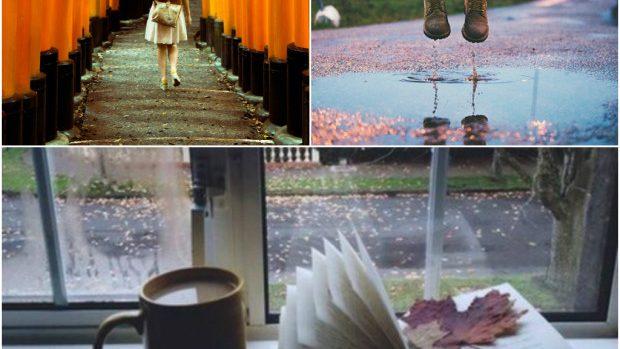 (foto) 25 de fotografii pentru ca să iubim ploaia toamna aceasta