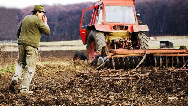 (doc) Ministerul Educației: Participarea elevilor la lucrările agricole este interzisă