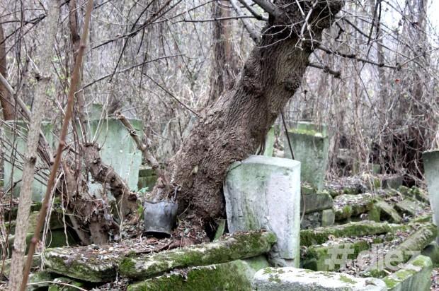 Acțiune de salubrizare a cimitirului evreiesc din Chișinău