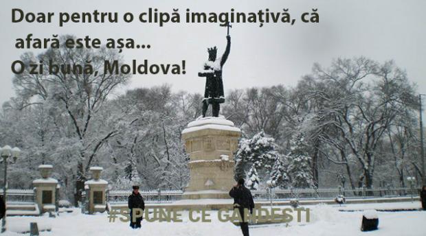 (foto) Care sunt efectele lipsei zăpezii și a gerului pentru moldoveni