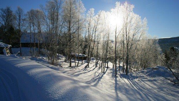 De Revelion ne așteaptă un ger de minus 24 de grade