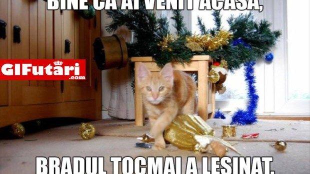 (foto) Cele mai amuzante meme-uri despre sărbătorile de iarnă