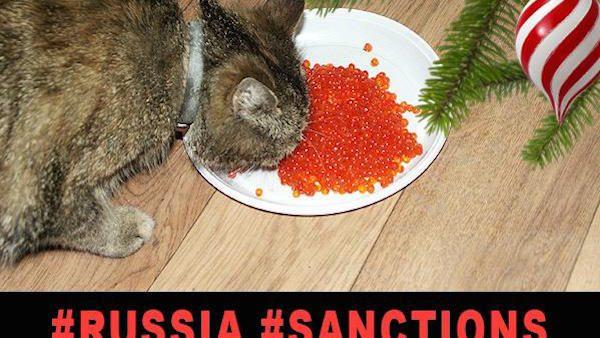 (foto) Cum ironizează instagramerii ruși criza din Rusia