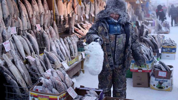 (foto, video) Fotografii fascinante din cel mai friguros loc de pe Pământ
