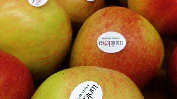 Un producător de fructe din Criuleni exportă mere în Bangladesh