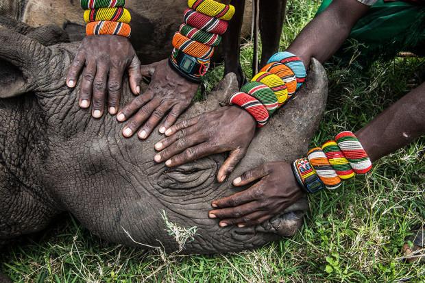 Al doilea loc la categoria Natură, Rinocer orfan, de Ami Vitale/National Geographic.