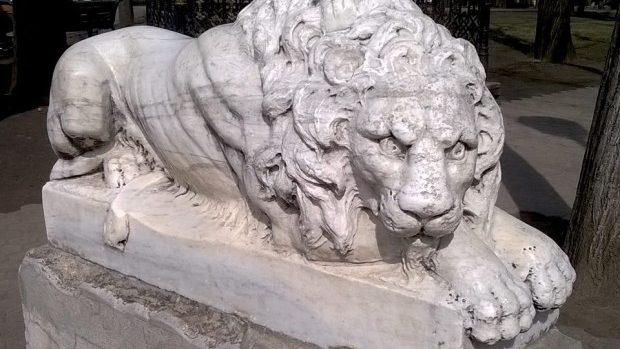 (foto) Sculpturile leilor din diverse colțuri ale lumii fotografiate de tânăra Lia Rusu