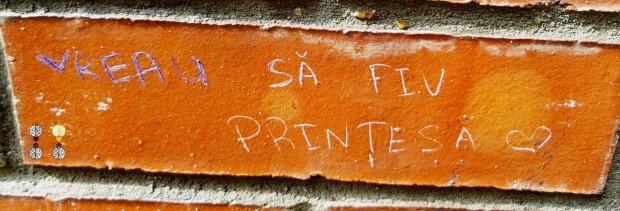 PC: Facebook/Misterul Dorințelor