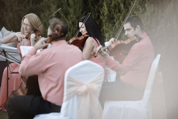 Muzicanți