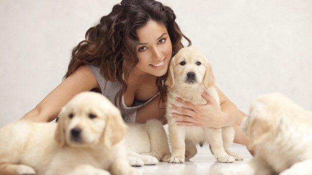 (video) Adoptă un animal de companie și uită de stres, griji și nevoi