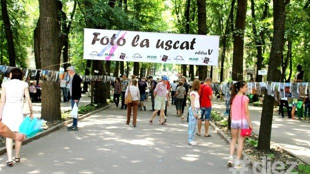 "De Ziua Orașului vino la expoziția ""Foto la uscat"" și ajut-o pe Nika"
