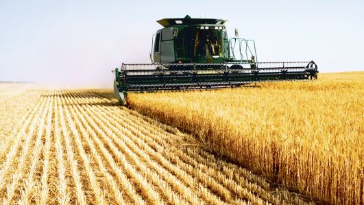 Soluțiile propuse agricultorilor din Moldova de către Președintele Parlamentului