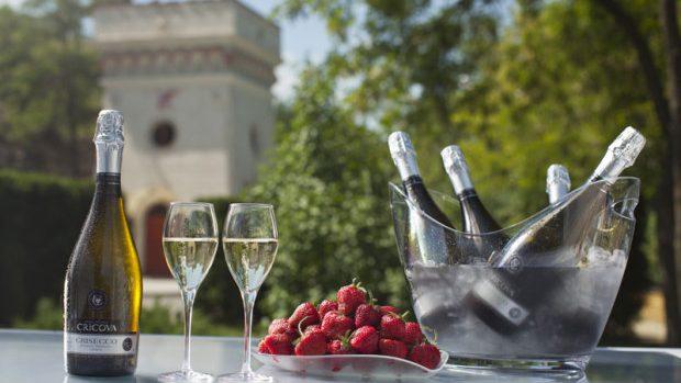 (foto) Recomandări de vinuri albe din Moldova care se potrivesc verii 2015