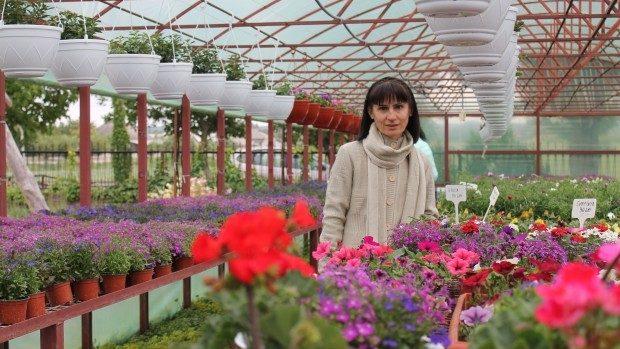(foto) Semințele germane au transformat Slobozia-Dușca într-un sat al florilor