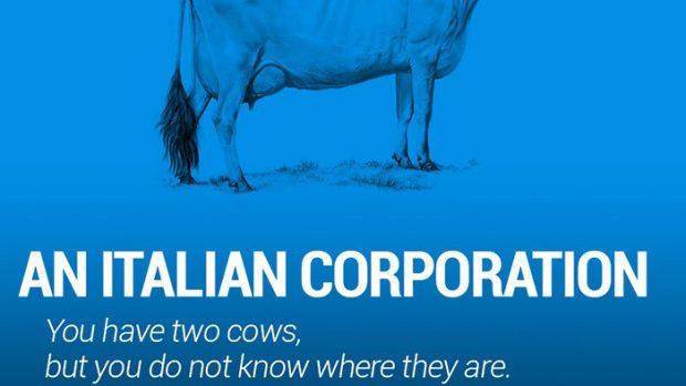 (foto) Două vaci explică pe înțelesul tuturor ce este Economia Mondială