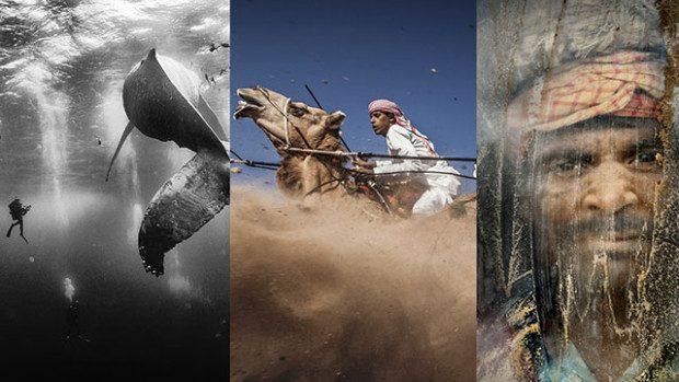 (foto) Zece fotografii câștigătoare la National Geographic Traveler Photo Contest