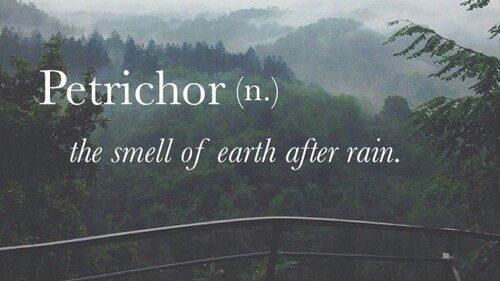 Meteorologii prognozează ploi pentru sfârșitul săptămânii. Ce temperaturi ne așteaptă