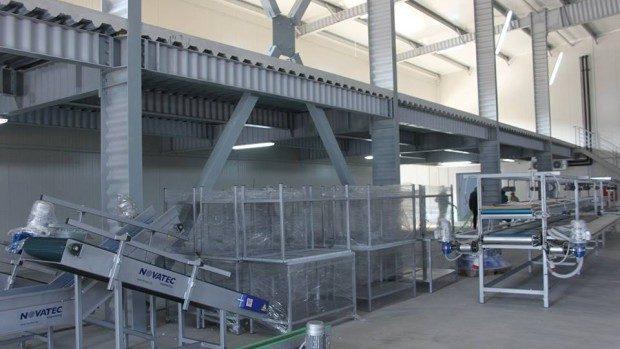 (foto) A fost inaugurată prima casă de procesare și ambalare a strugurilor din Moldova