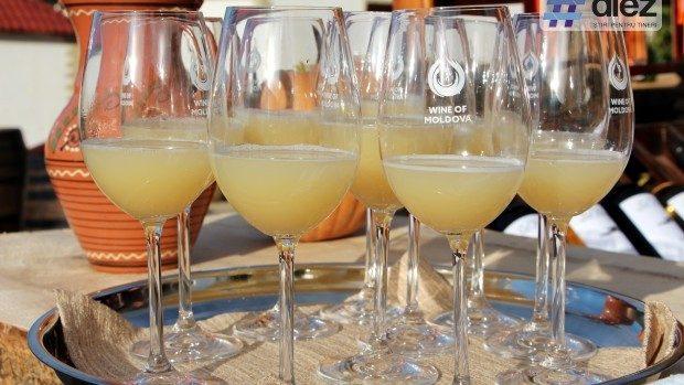 Ziua Vinului în cifre: 17.000 de persoane au participat în total la activitățile vinăriilor