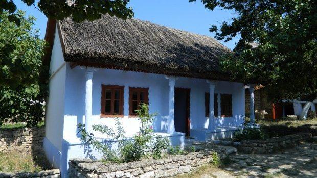 (foto, video) De la tradiție la confort. Casele acoperite cu stuf: iarna cald și vara răcoare