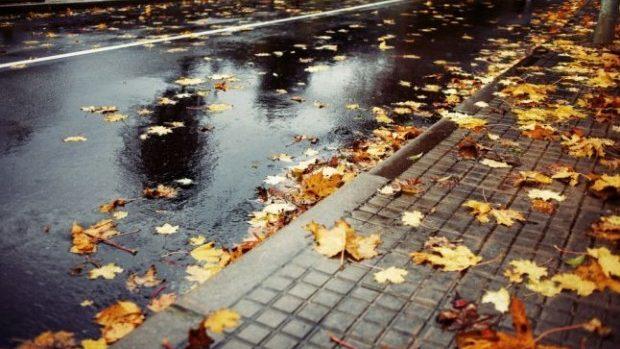 Meteo: Cod galben de precipitații și vânt puternic în toată țara până duminică
